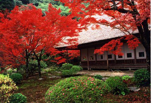 九年庵(旧伊丹氏別邸)庭園