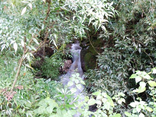 観音橋下流の滝